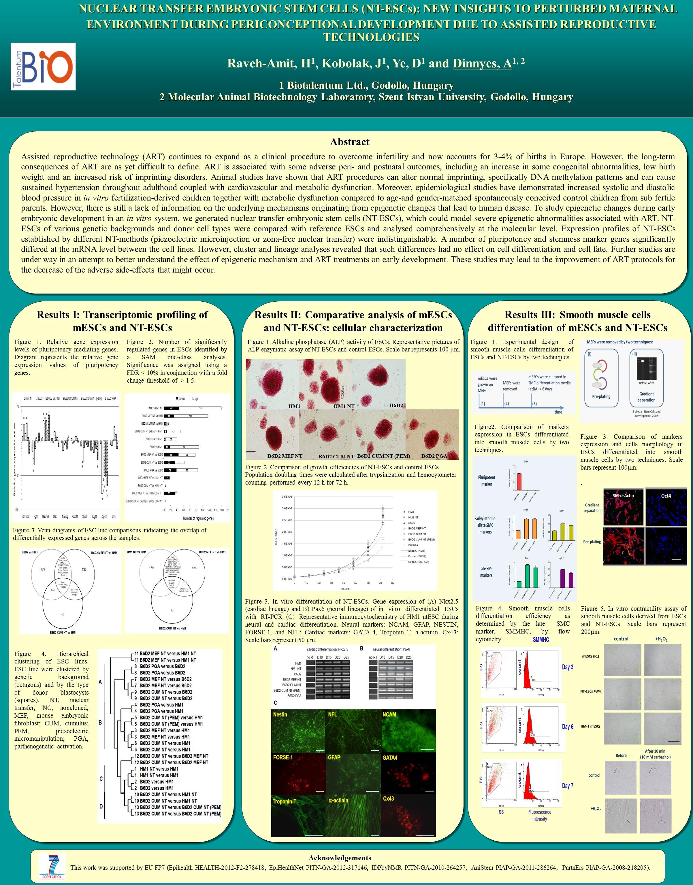Templates for scientific posters portrait